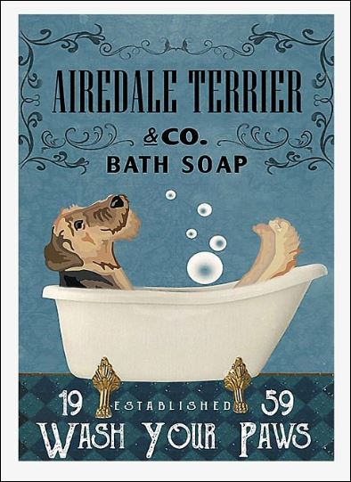 Airedale terrier co bath soap wash your paws poster