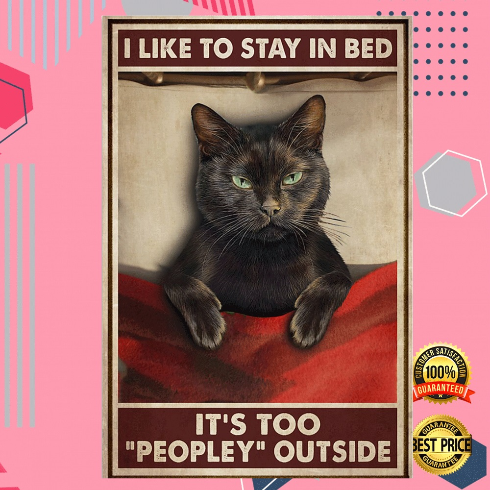 Black Cat I Like To Stay In Bed It's Too People Outside Poster 6
