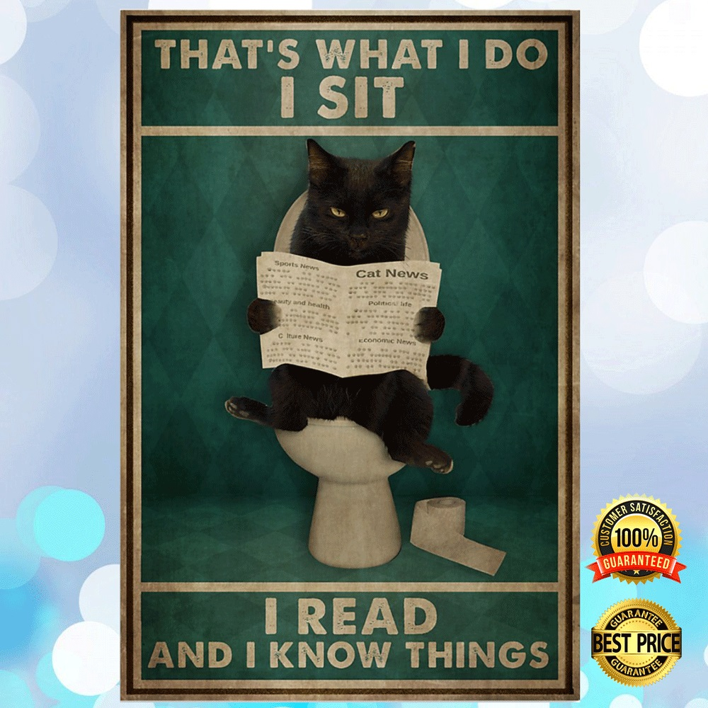 Black Cat That's What I Do I Sit I Read And I Know Things Poster 4