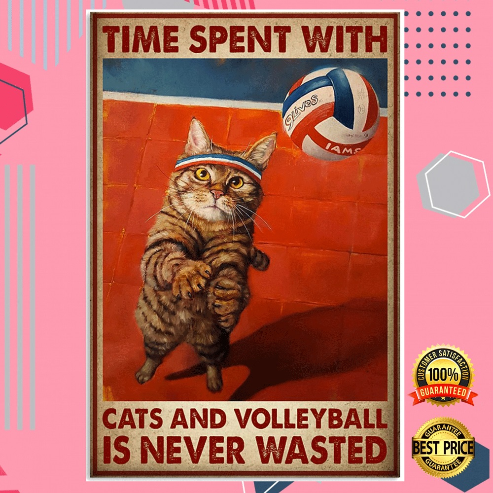 Time Spent With Cats And Volleyball Is Never Wasted Poster 5