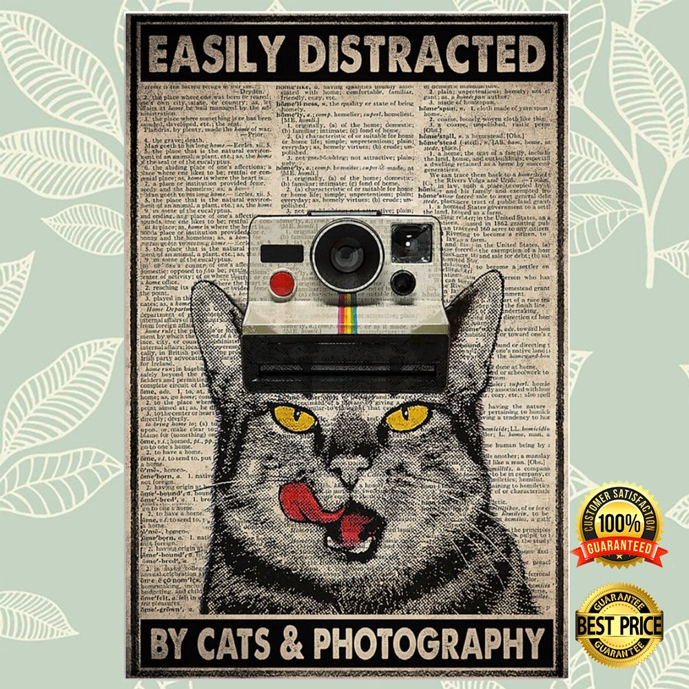Easily Distracted By Cats And Photography Poster 4