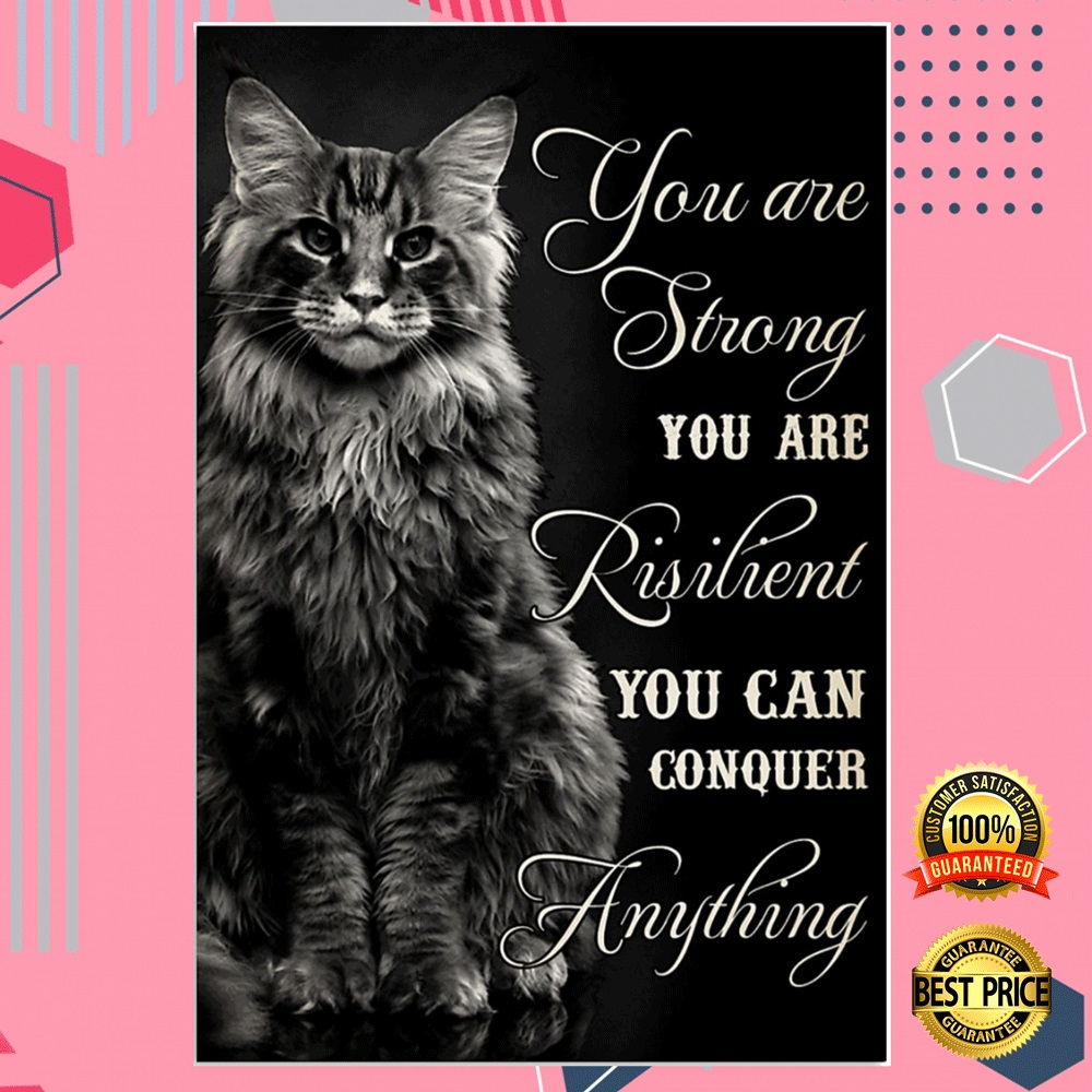 Cat You Are Strong You Are Resilient You Can Conquer Anything Poster 4